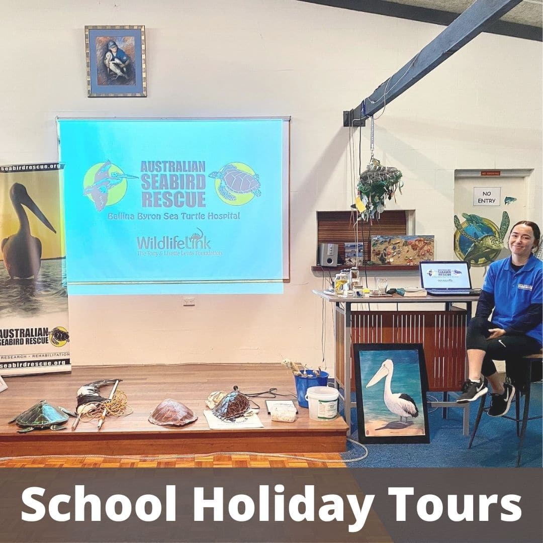 School Holiday Tours